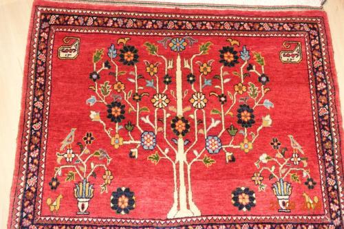 Vacker Ghashgai från Persien